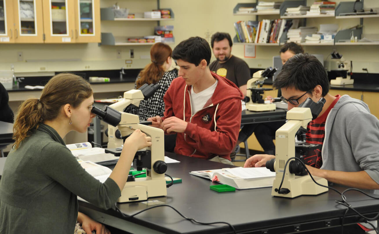 Three students looking through microscopes in class