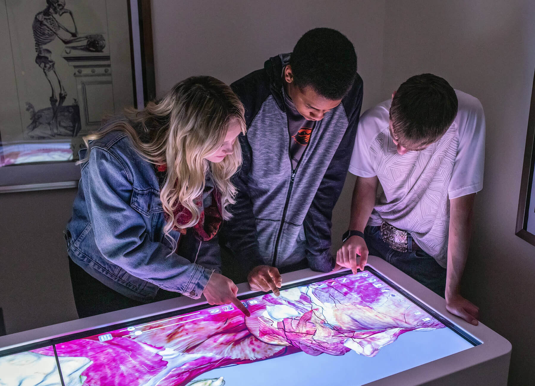 students with virtual cadaver machine